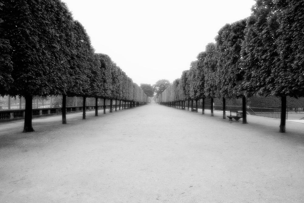 Horizon Lines, Paris