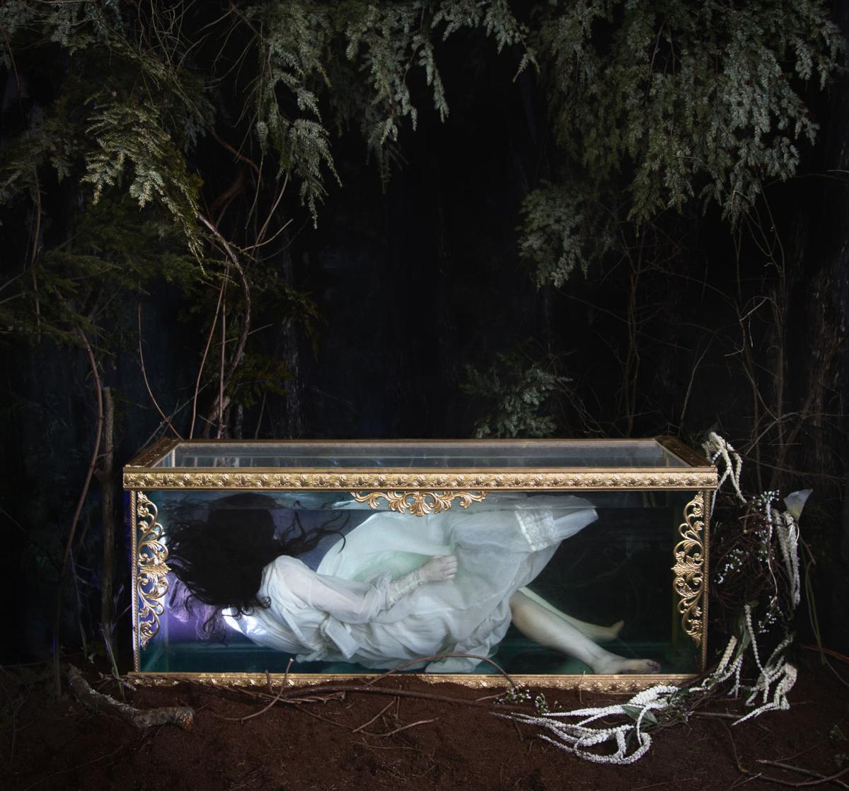 Snow Whites Long Sleep