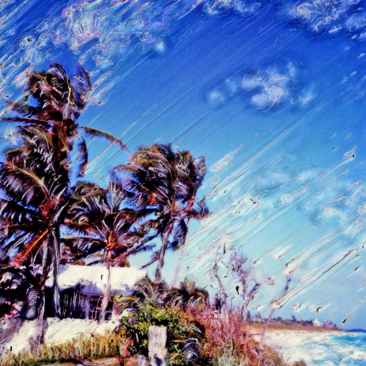 1blowing_palms_4