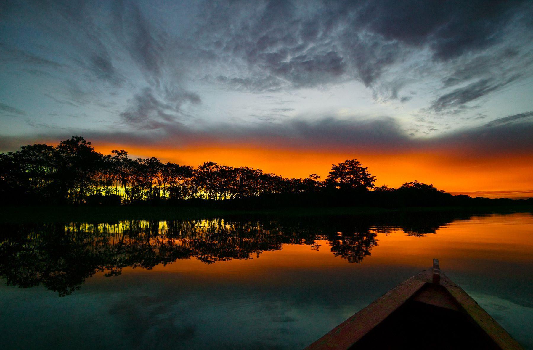 Amazonas' Dream