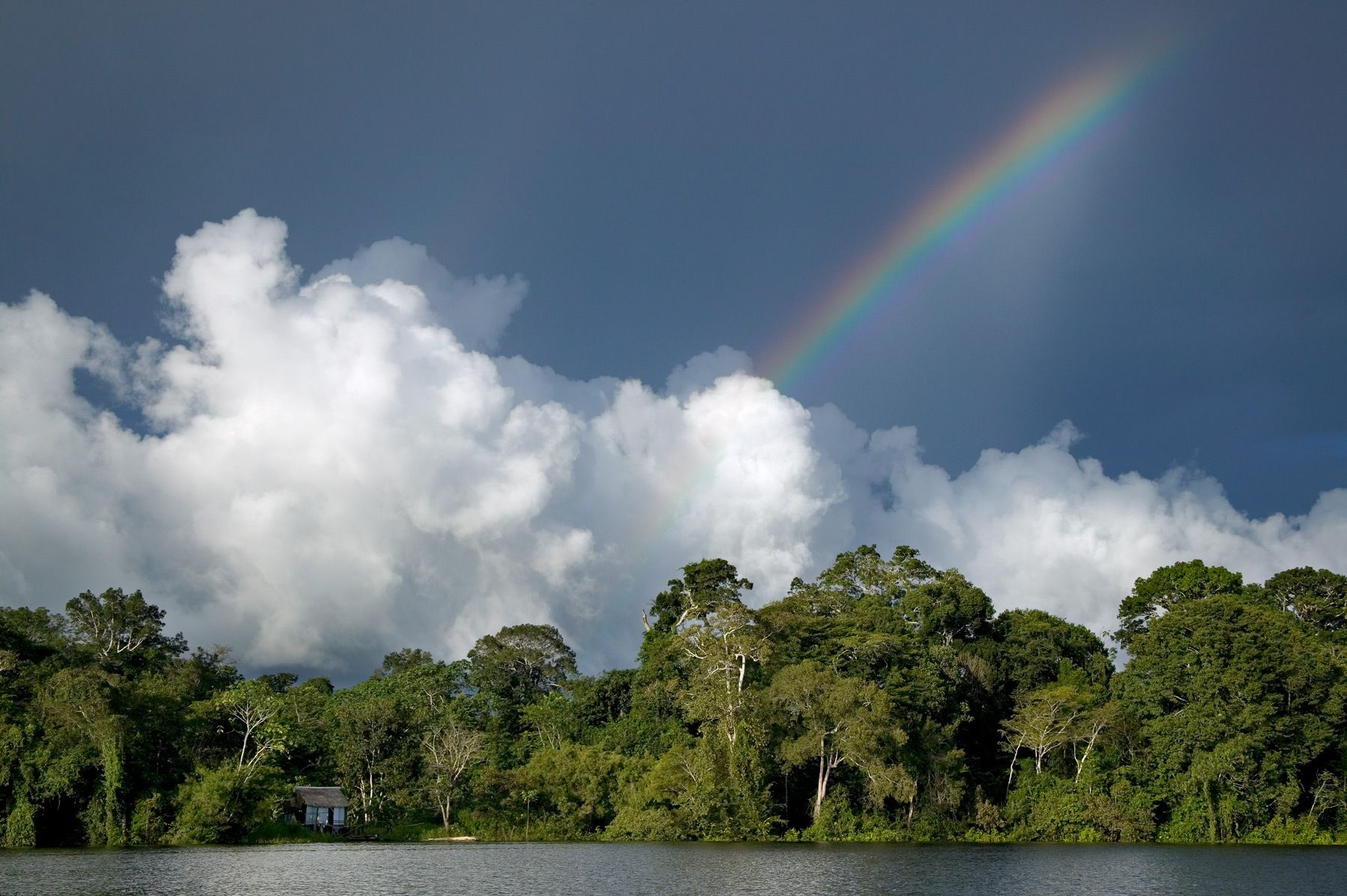 At the edge of the Amazonas