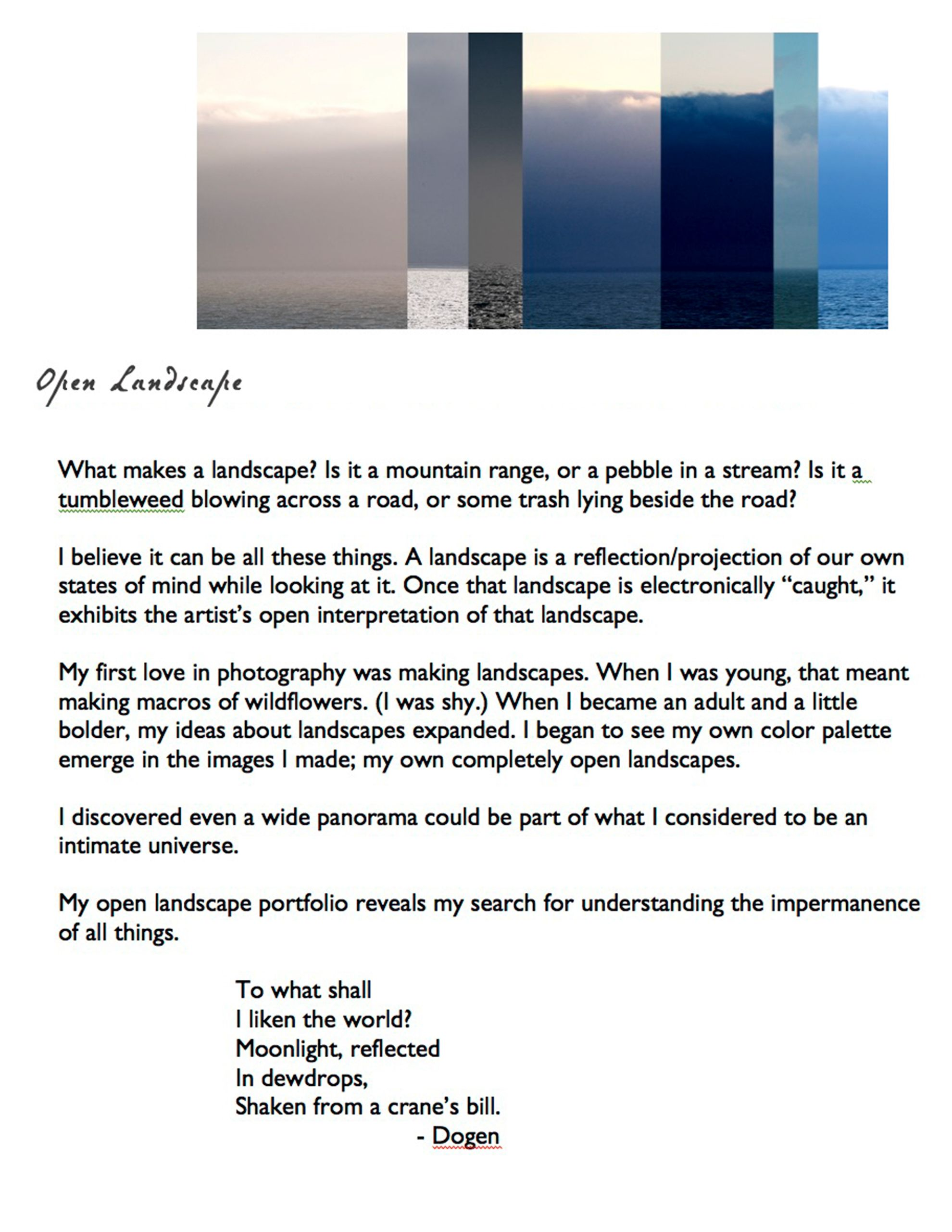 Open Landscape Artist Statement