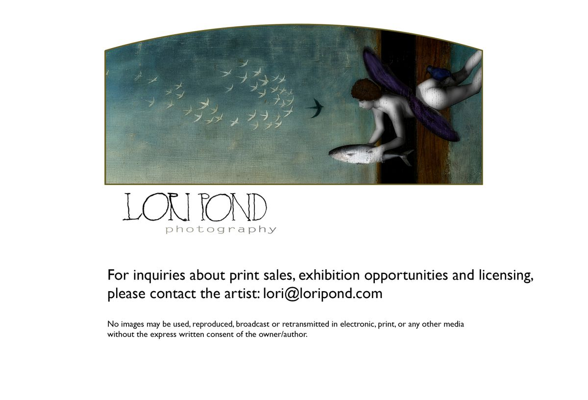 WELCOME TO LORI POND PHOTOGRAPHY.jpg