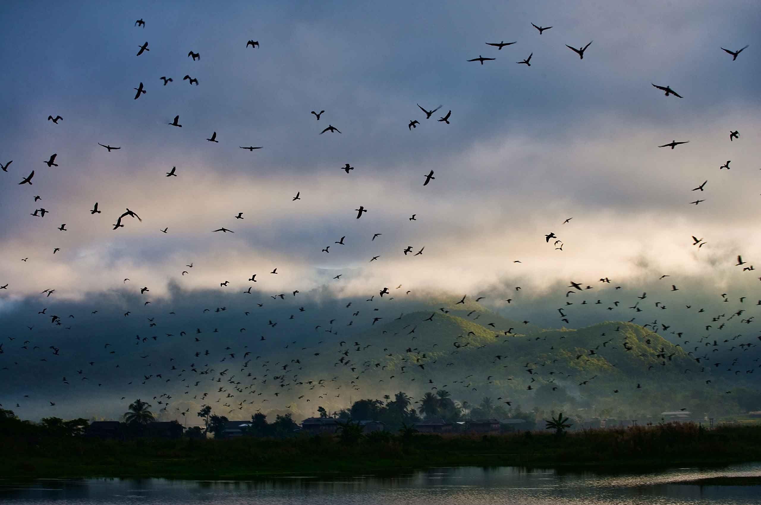 morning-lakeinle-mynmar-by-henrikolundphotography.jpg