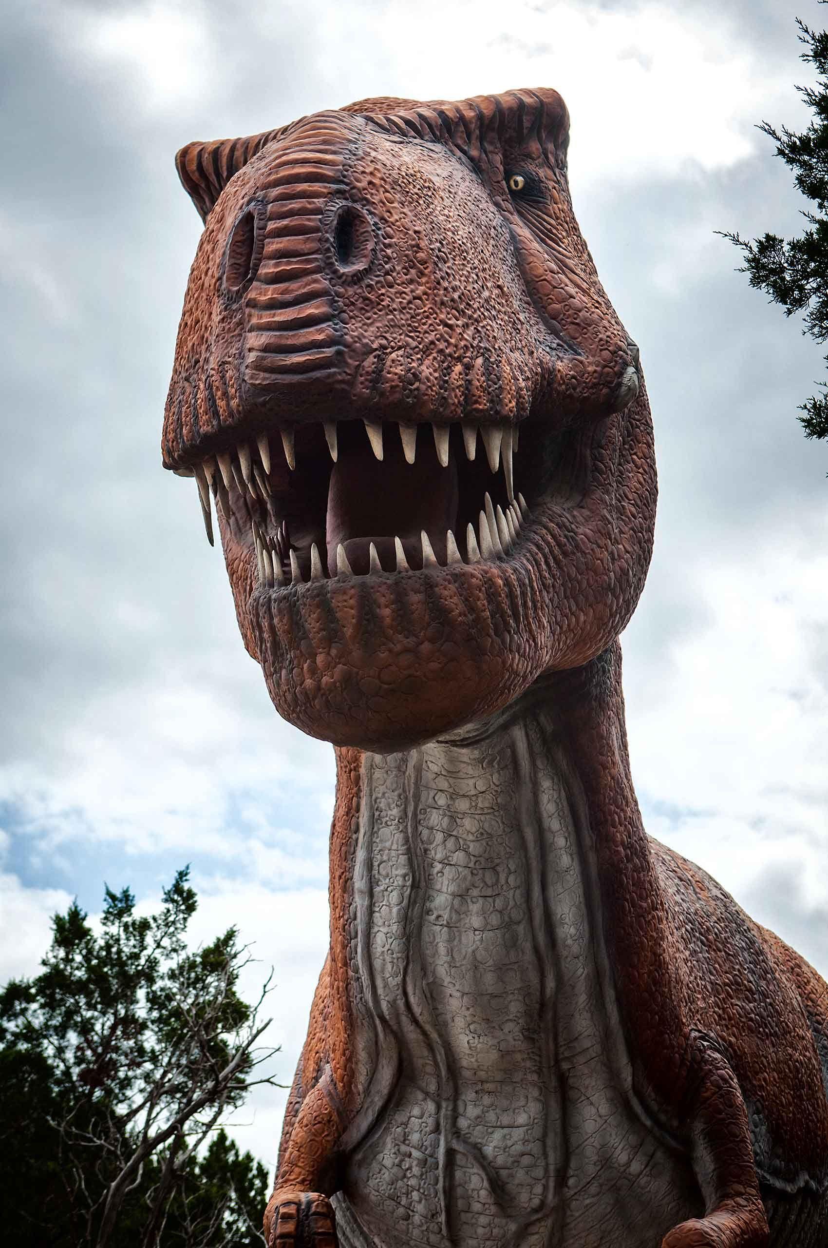 Dinosaur-by-HenrikOlundPhotography.jpg