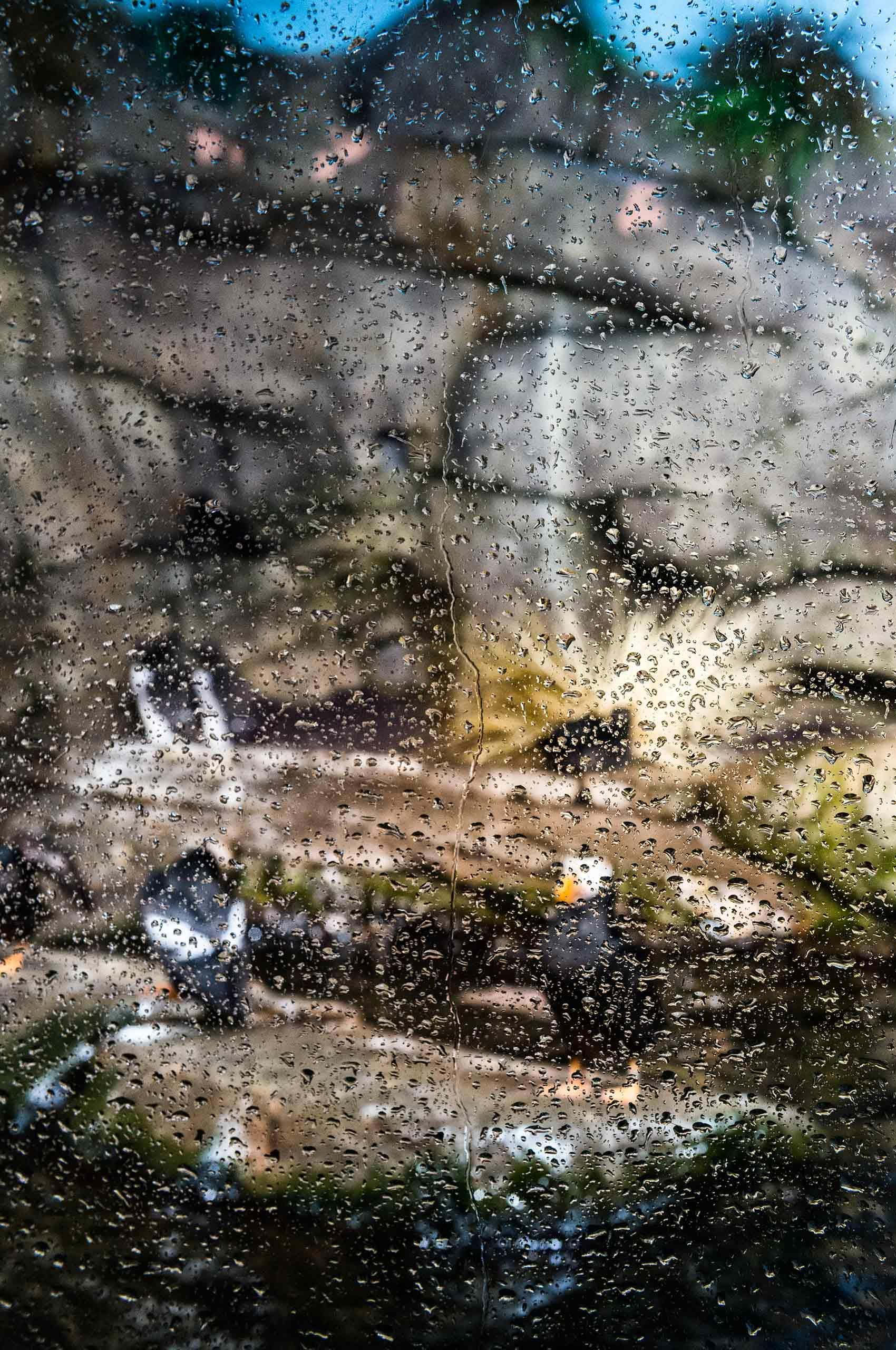 drops-on-window-penguins-montereybayaquarium-by-HenrikOlundPhotography.jpg