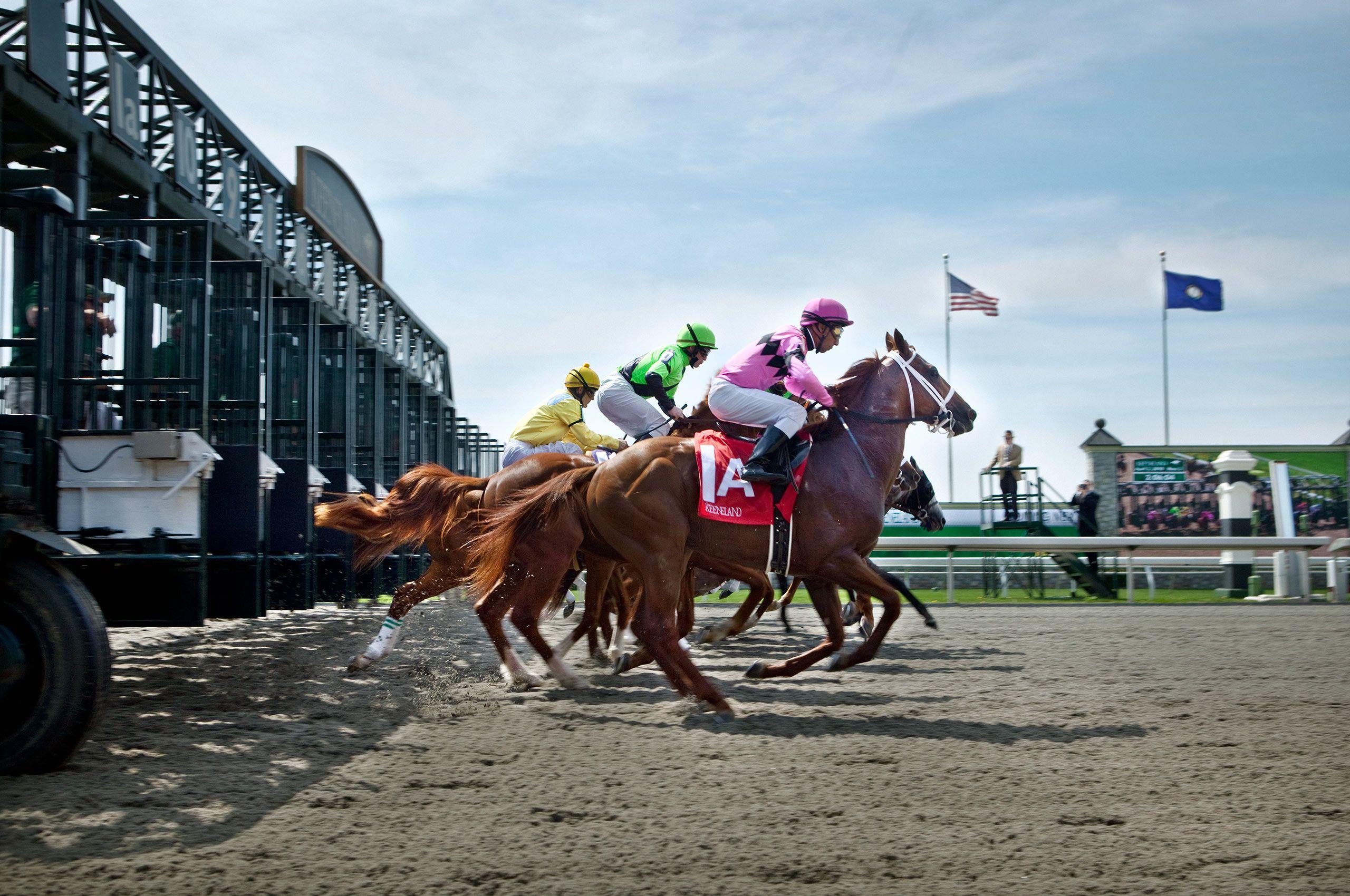 Horserace-Startingline-takeoff-HenrikOlundPhotography.jpg