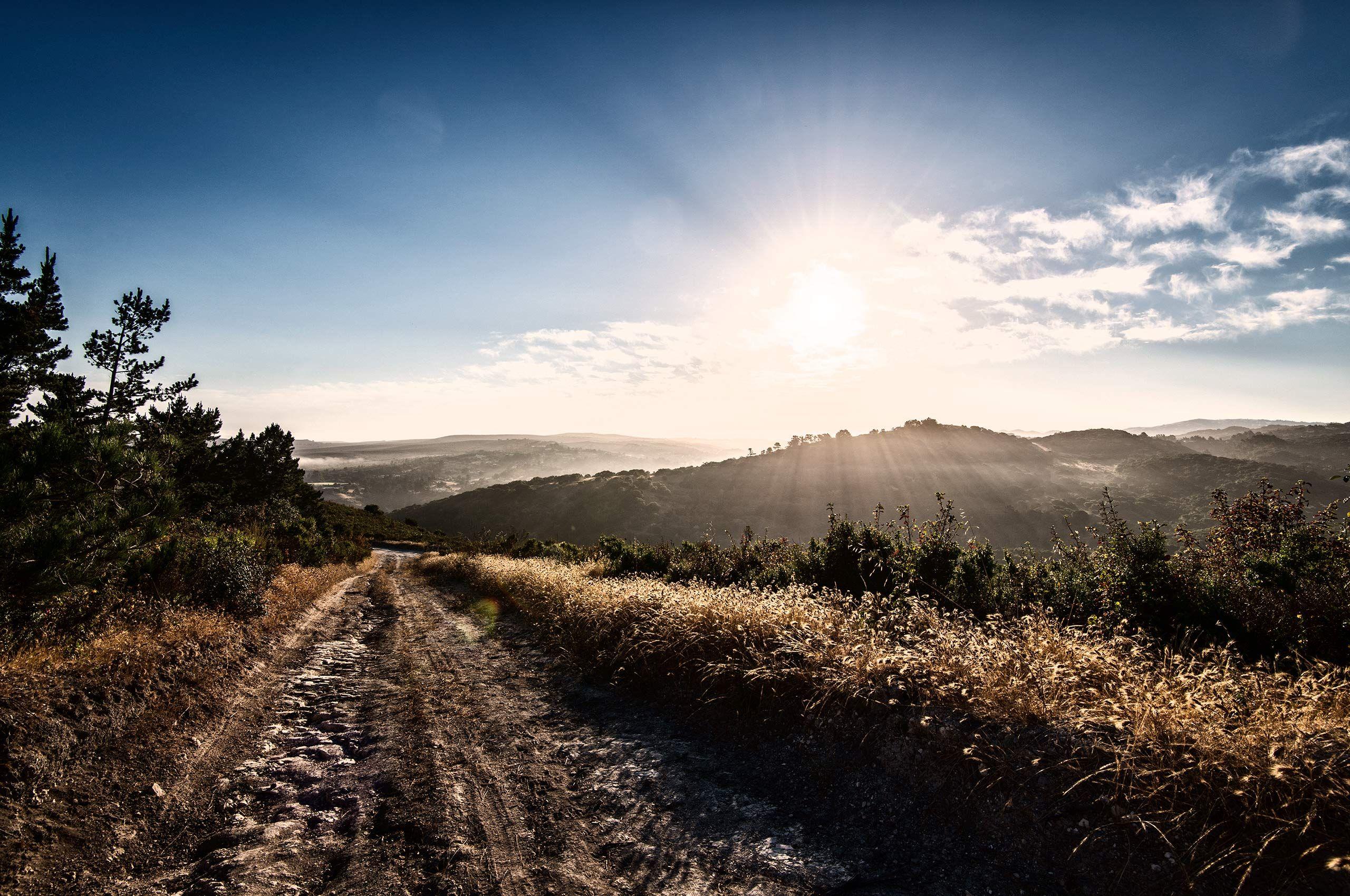 Landscape-Wilderness-Trail-Walden-Monterey-HenrikOlundPhotography.jpg