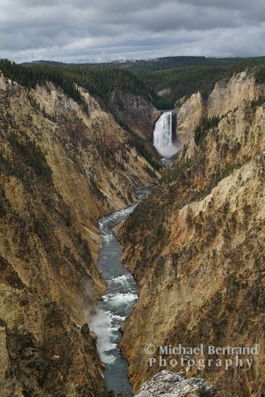 Lower Falls in Grand Canyon of Yellowstone