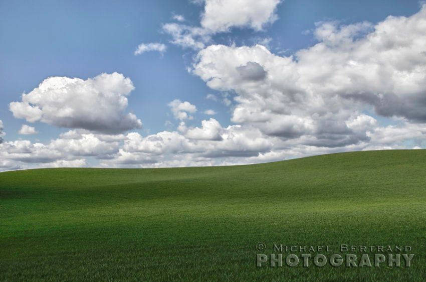 Palouse Splendor