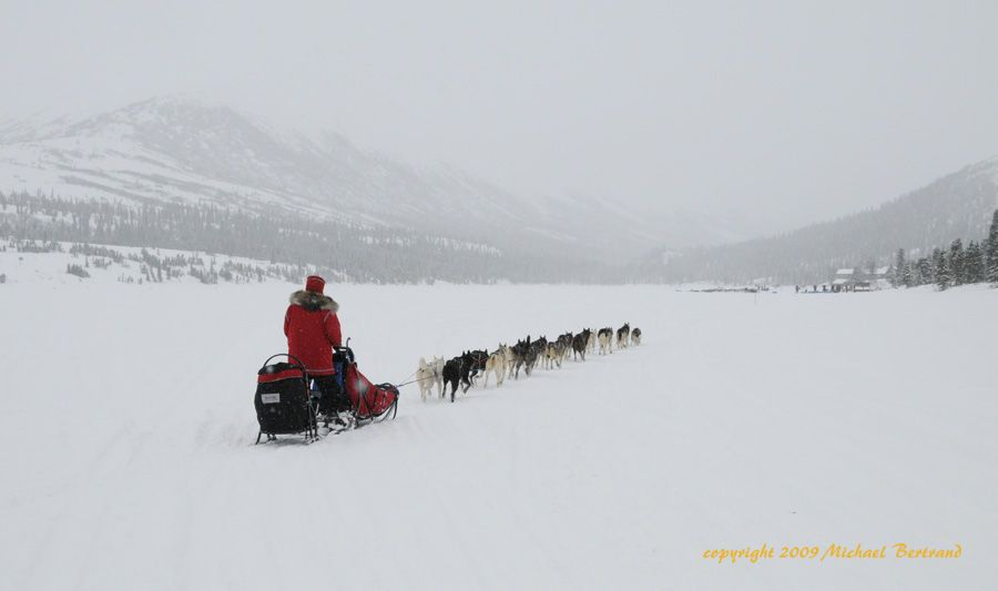 Rob Loveman arriving at Rainy Pass on Puntilla Lake in Iditarod 2009