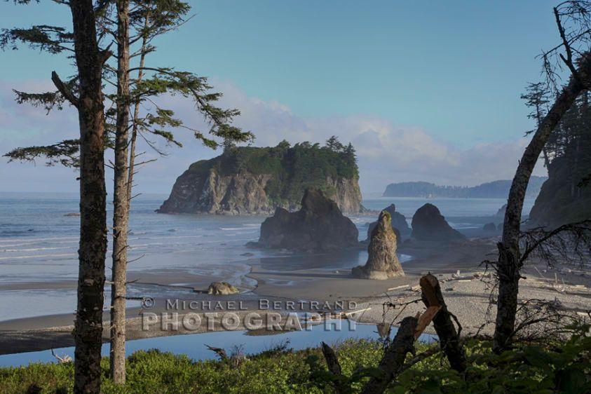 Ruby Beach Overlook