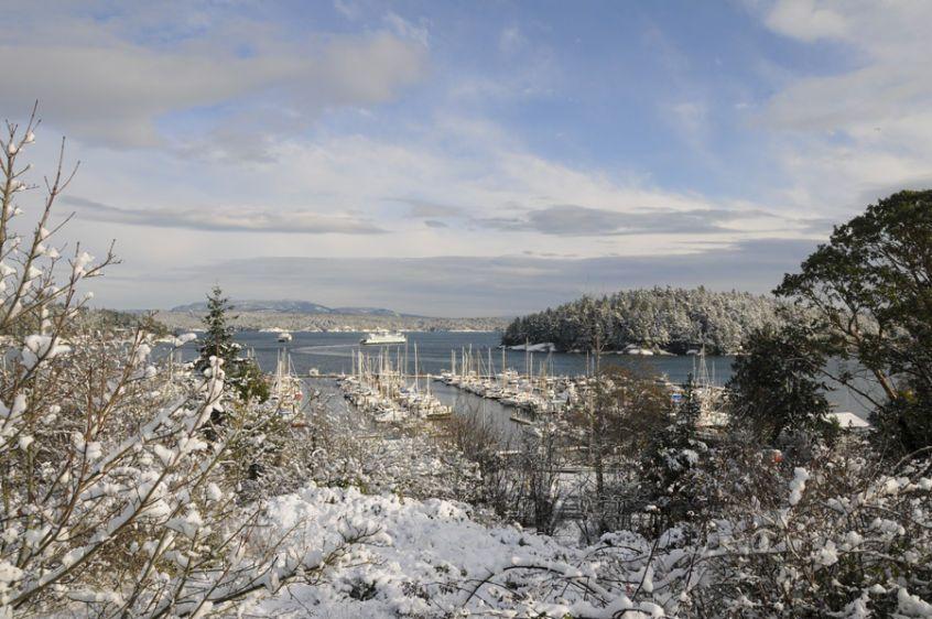 1Friday_Harbor_Marina_Snow_5785_livebooks.jpg