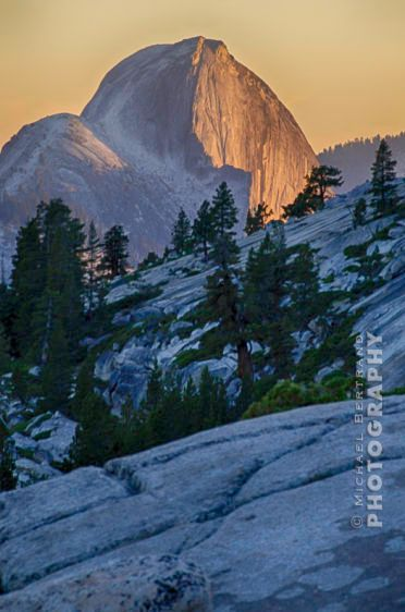 Half Dome from Olmsted Pt. Yosemite