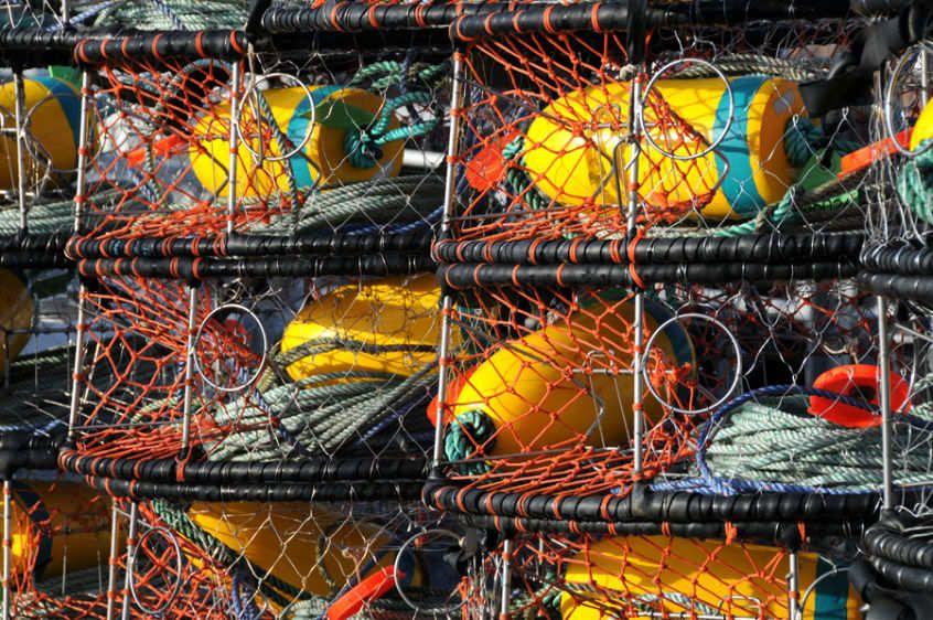 crab pots 5912