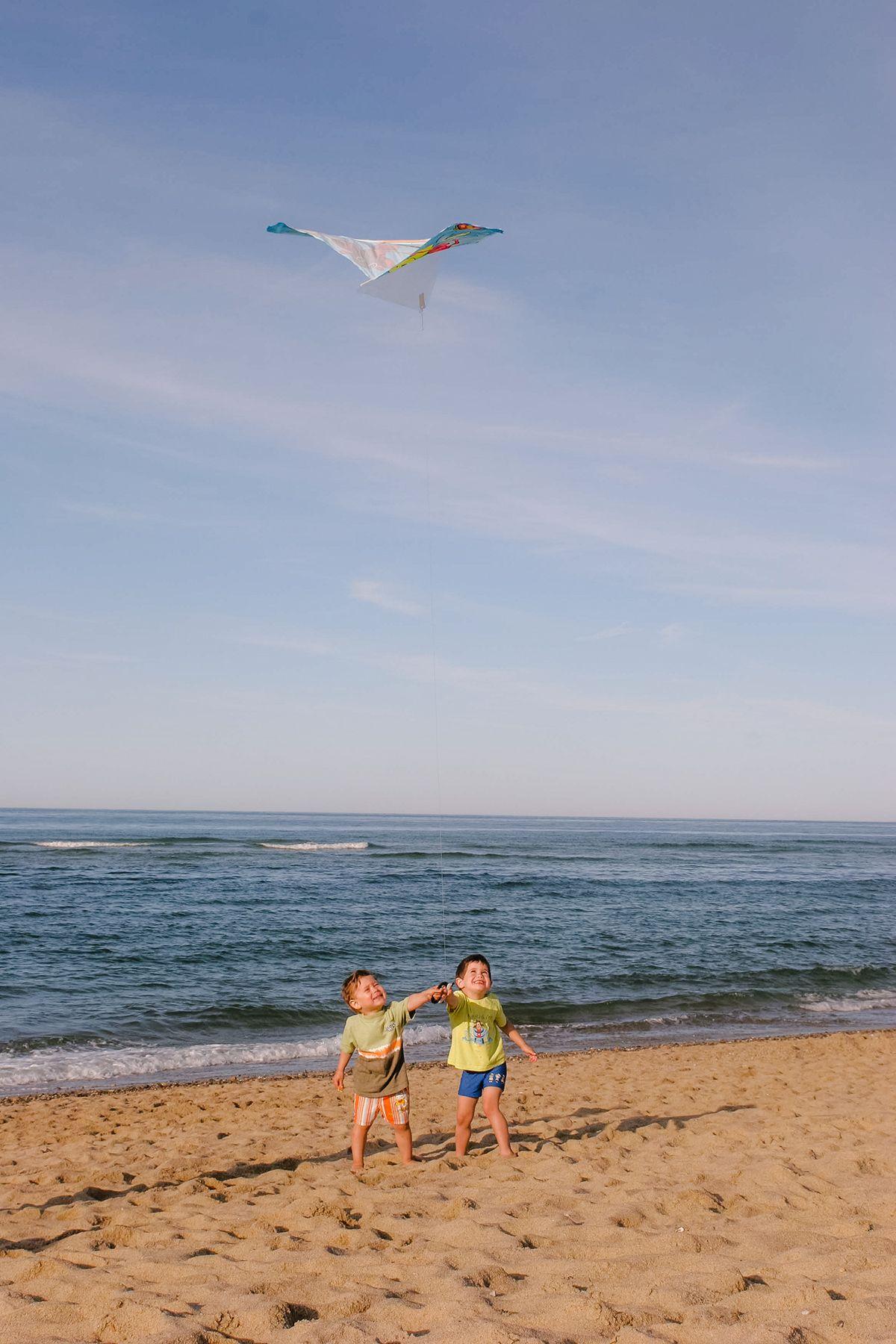 Kite on a Beach