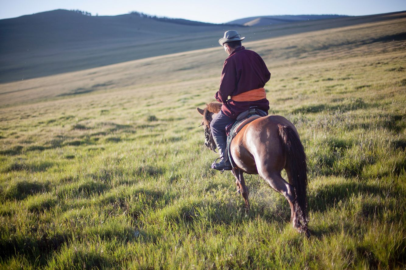 Horse Rider in Mongolia