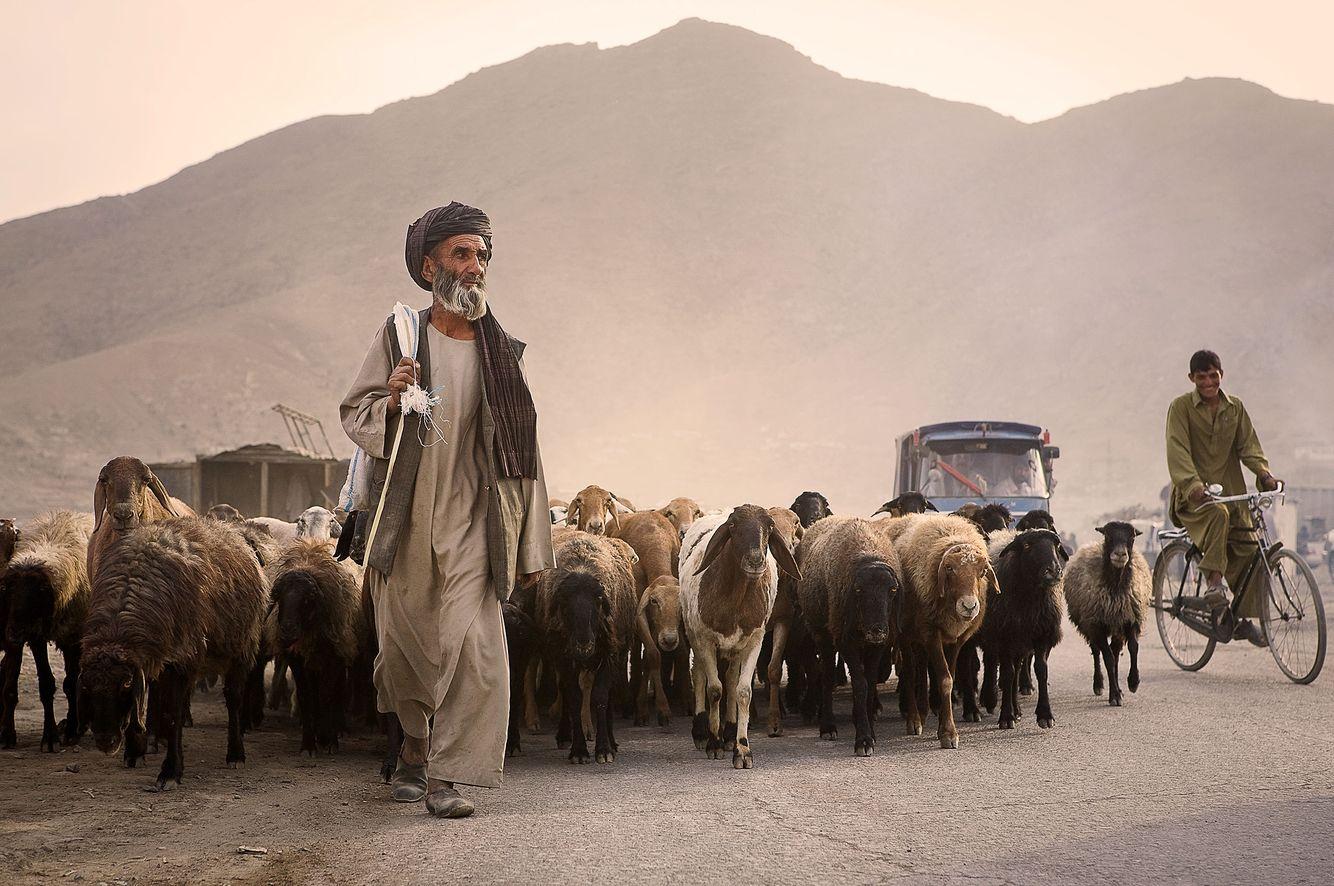 Afghan Road Life