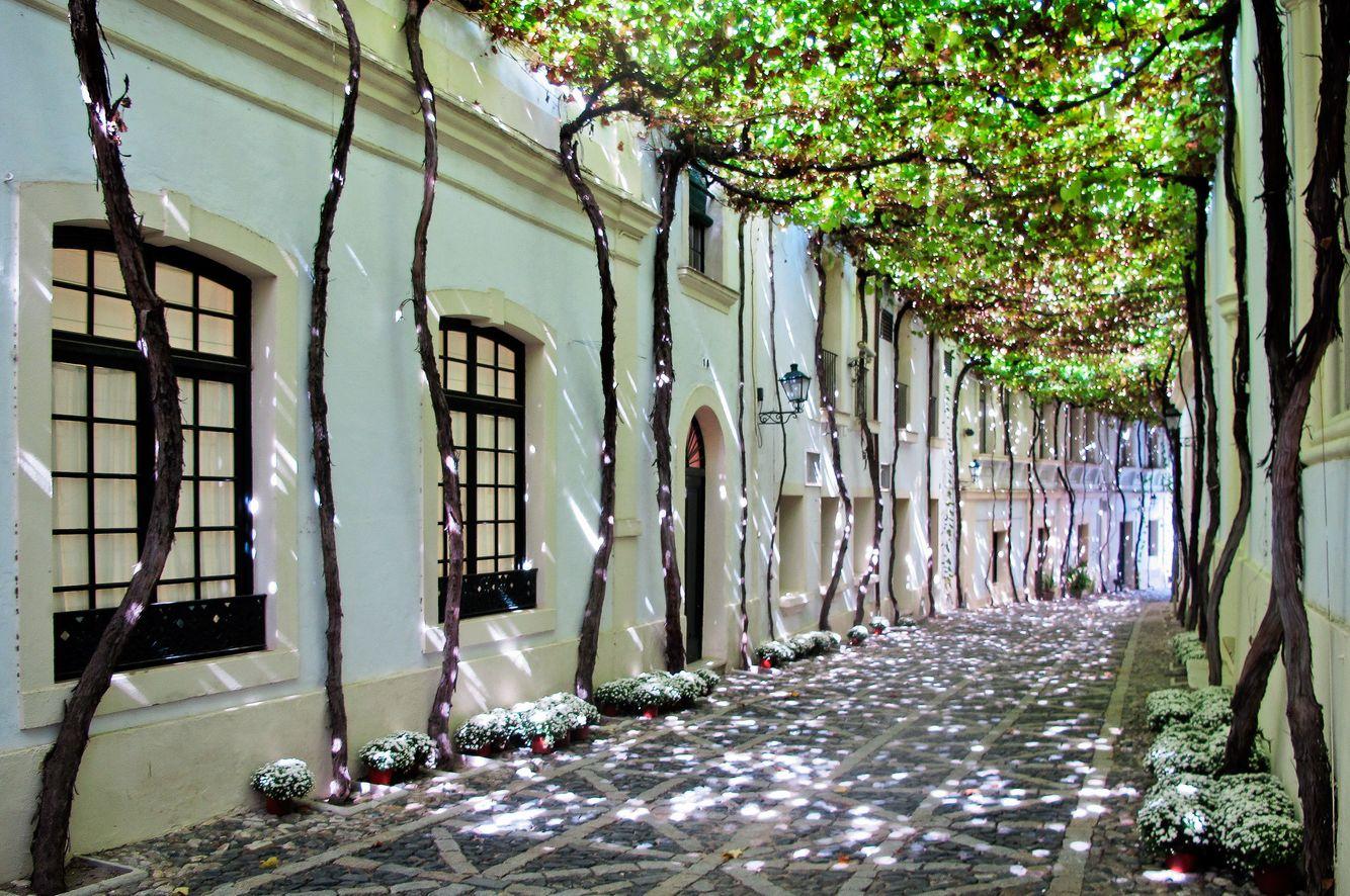 Winery in Spain.