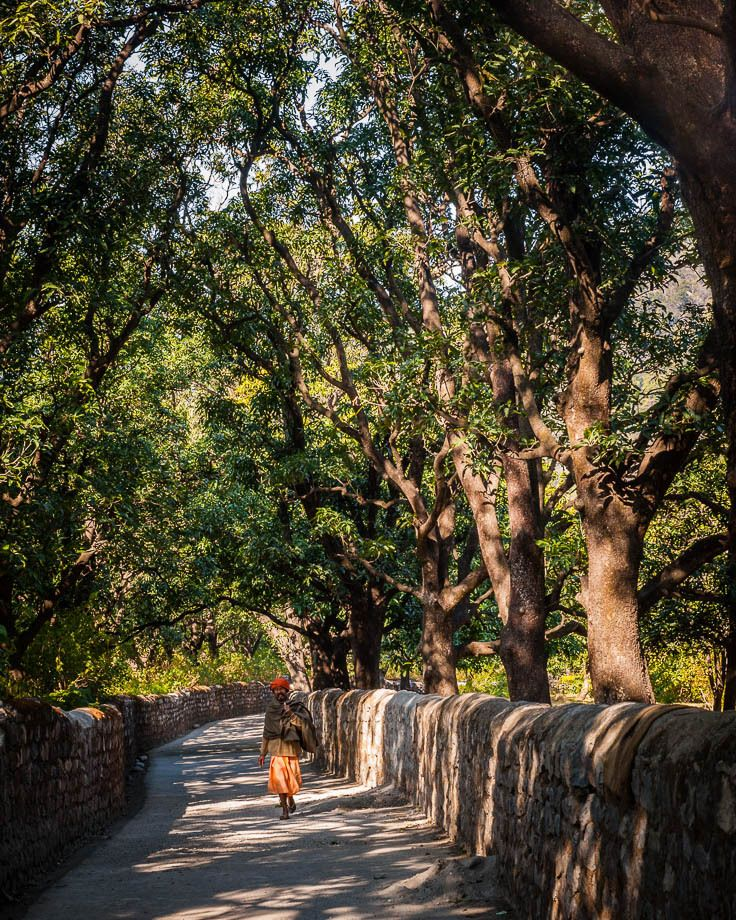 1man_in_orange_walking_down_treelined_road_rishikesh_india_01