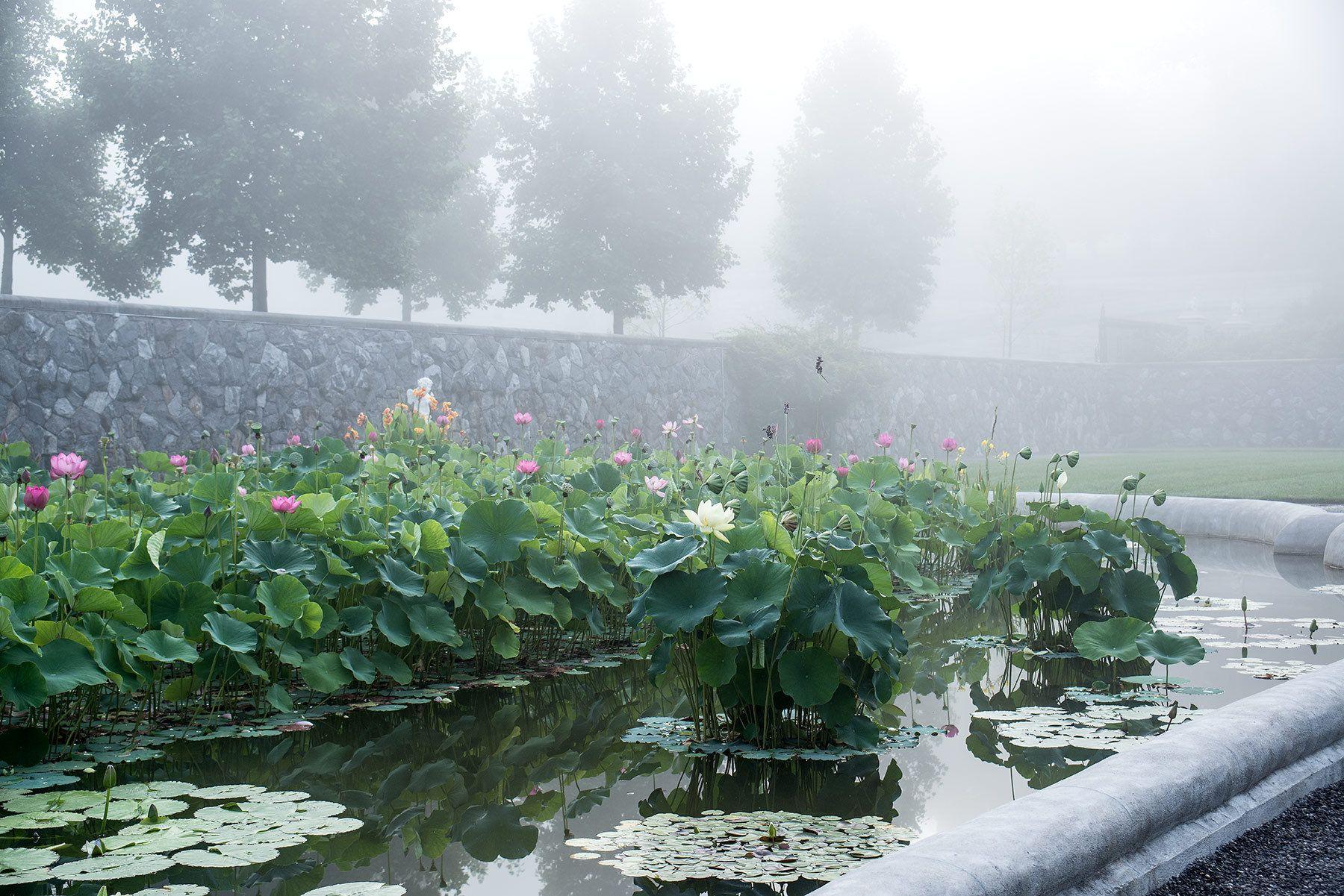 1biltmore_italian_garden