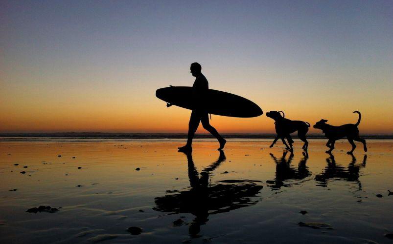 #dogbeach #california