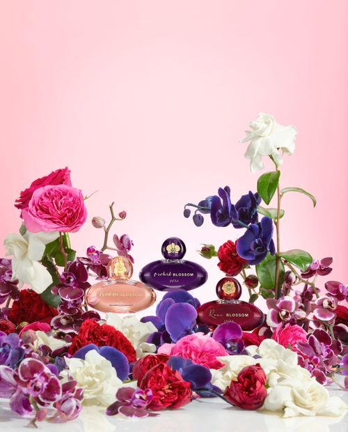 BlossomFranchiseGroup_vert_HR_r3.jpg