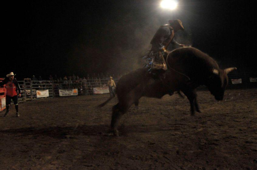 1OFBbucking_bulls154.jpg