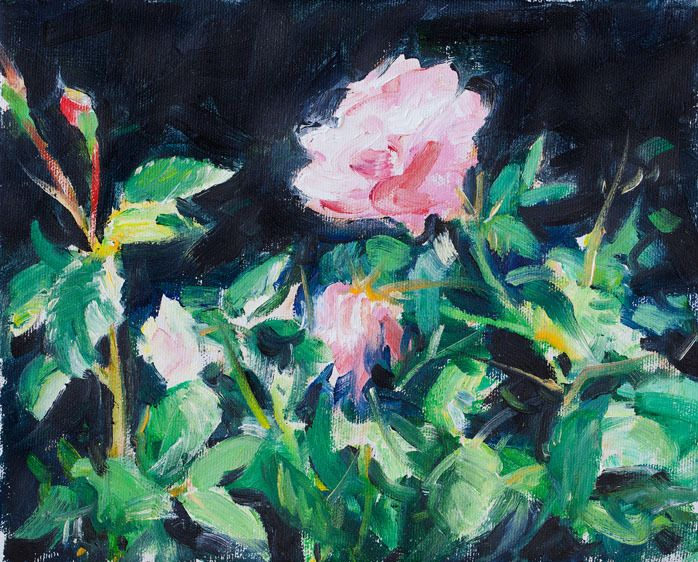 LATE SUMMER ROSES    8x10