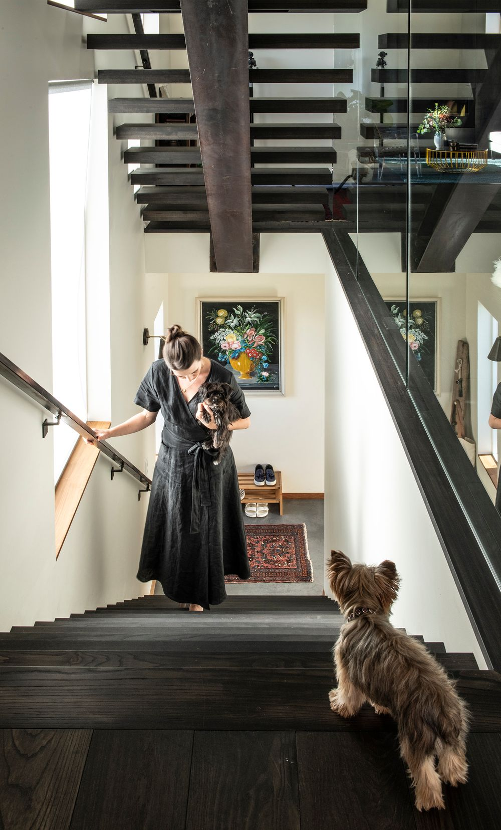 Interior editorial photo with terriers