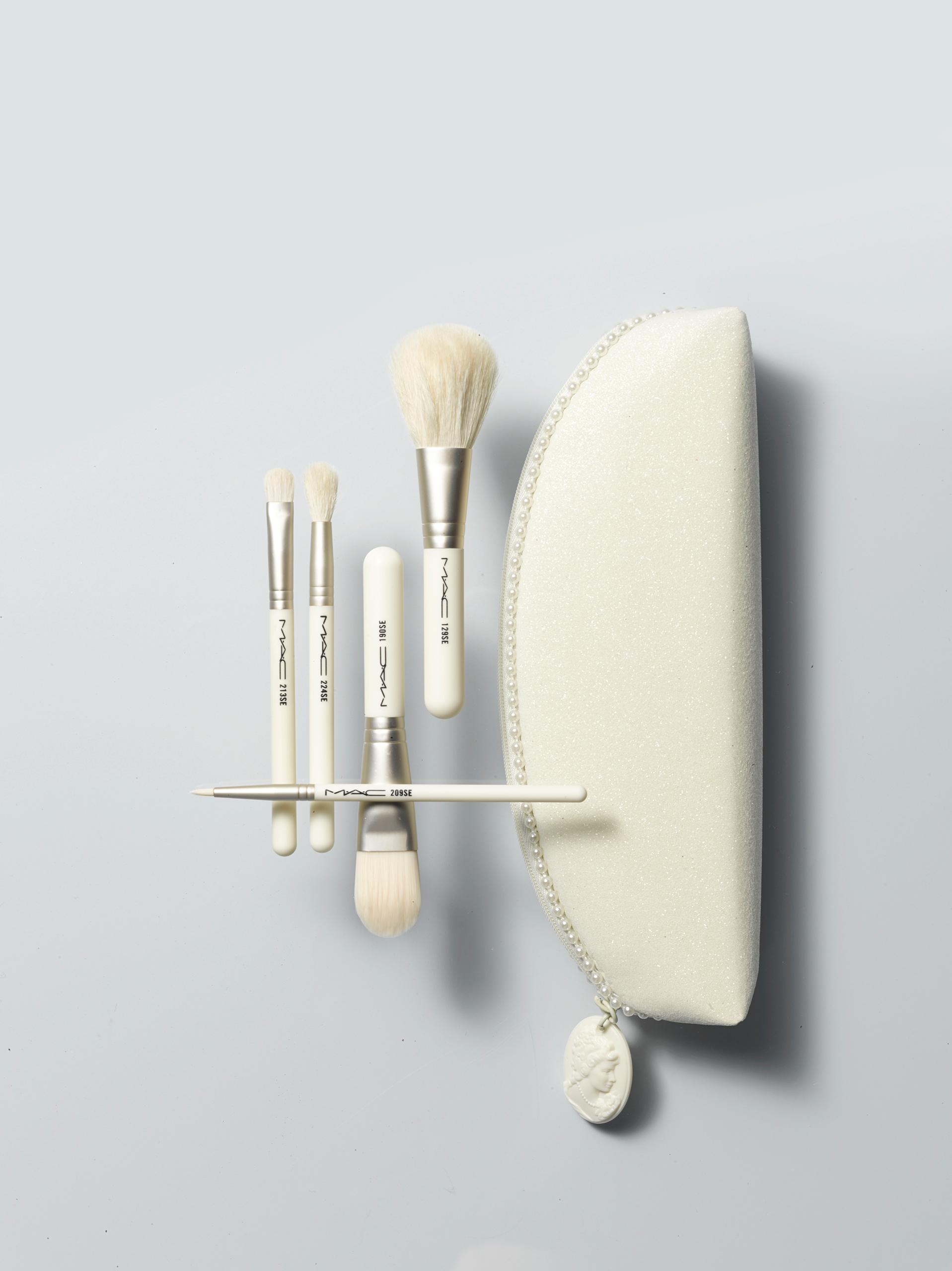 Nordstrom MAC Brush Set