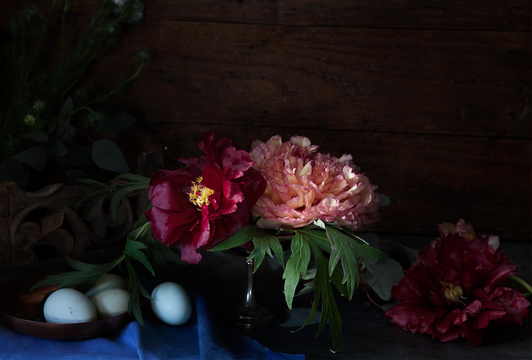 Spring_Stills2016_359.jpg