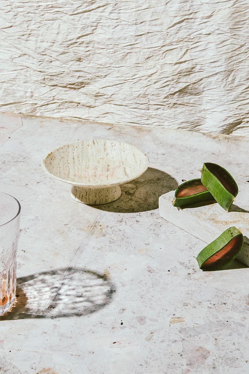 aloe-slices-Lauren-Segal.jpg