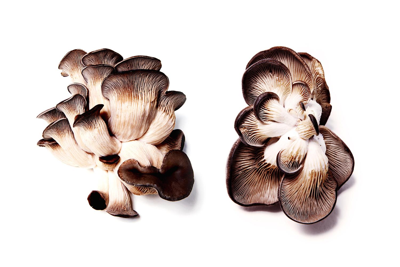 Shitake Mushroom Cluster