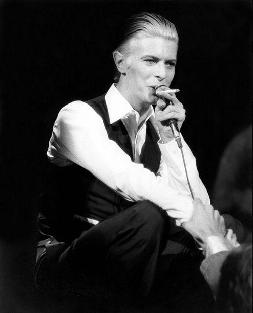 Bowie#1.jpg