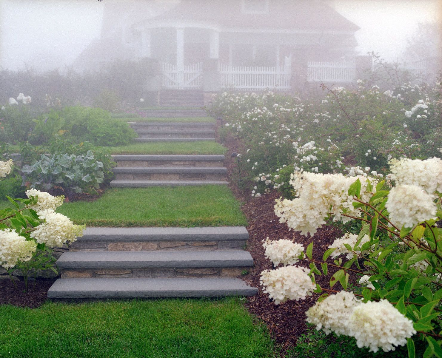 1stairway_in_fog_up_to_house