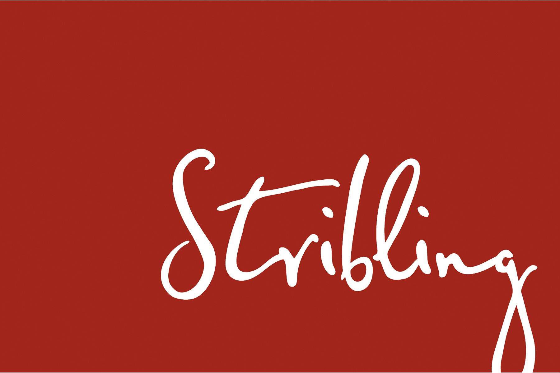 Stribling & Associates, Christopher Irion, PhotoBooth