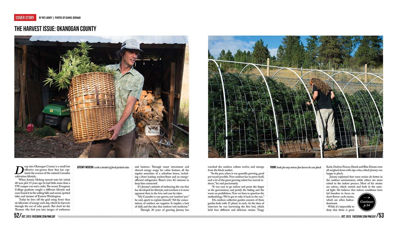 1marijuanaharvesting_photoessay_seattleeditorialphotographer4