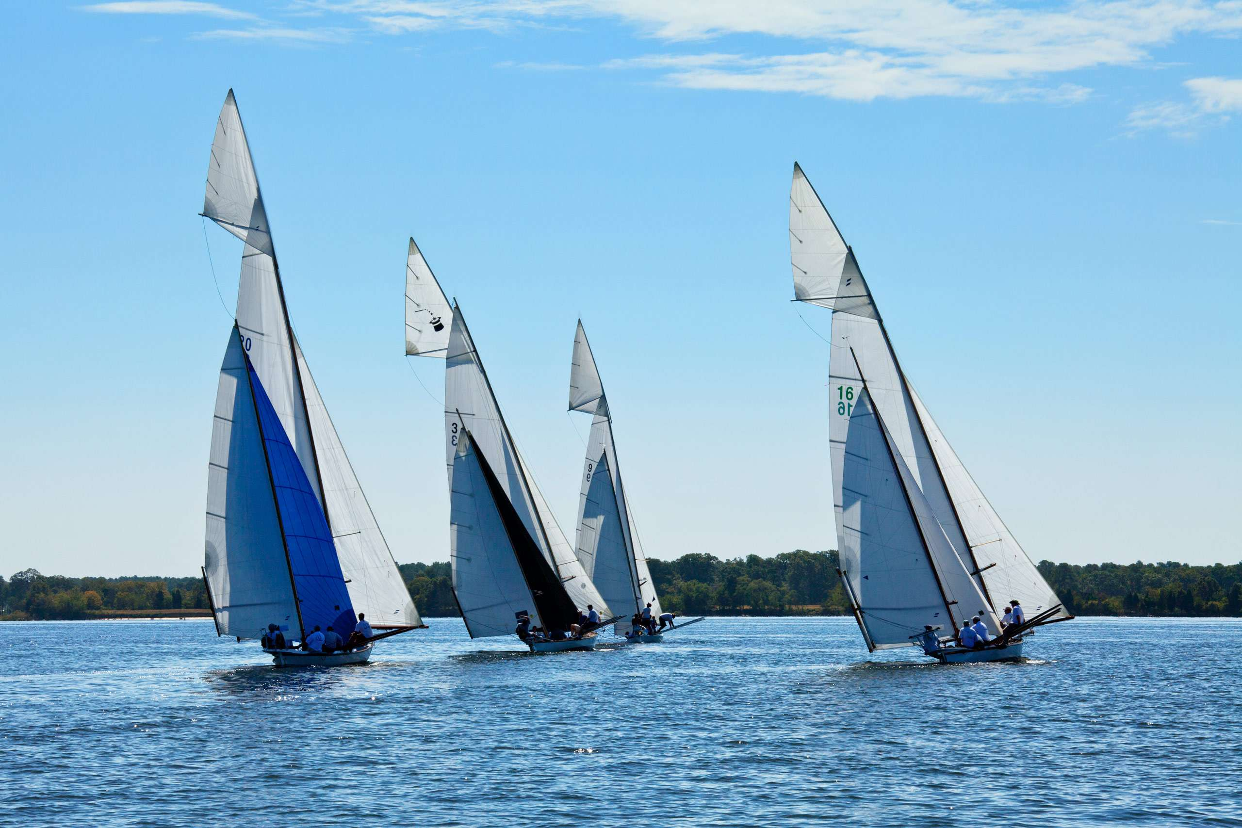 PORTFOLIO - Sailing - Log Canoes #21  PCG570