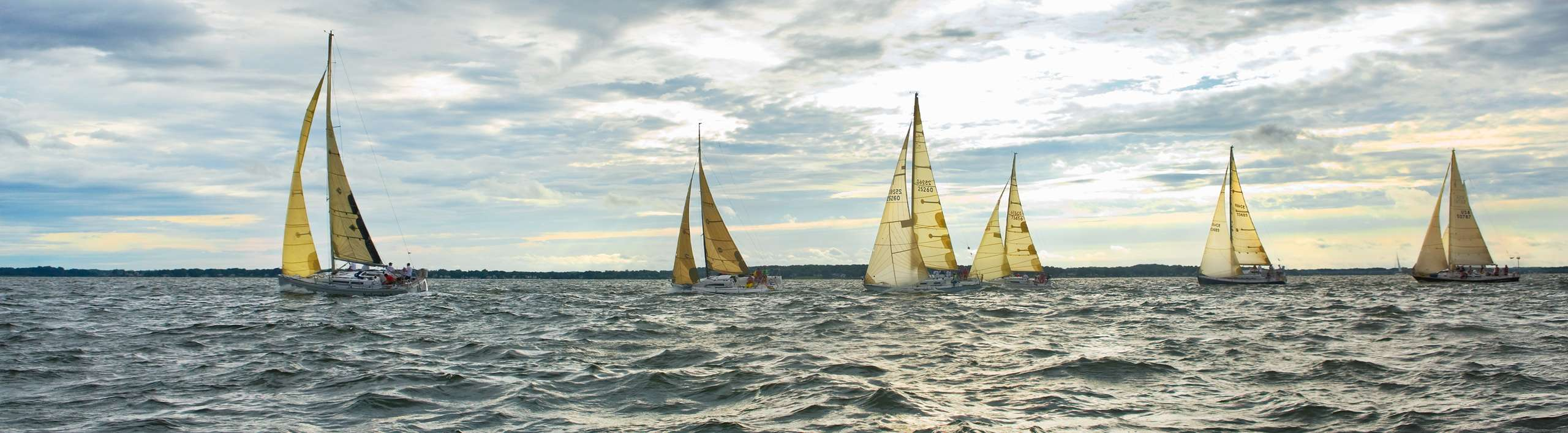 PORTFOLIO - Sailing - Chesapeake #24    PCG 427