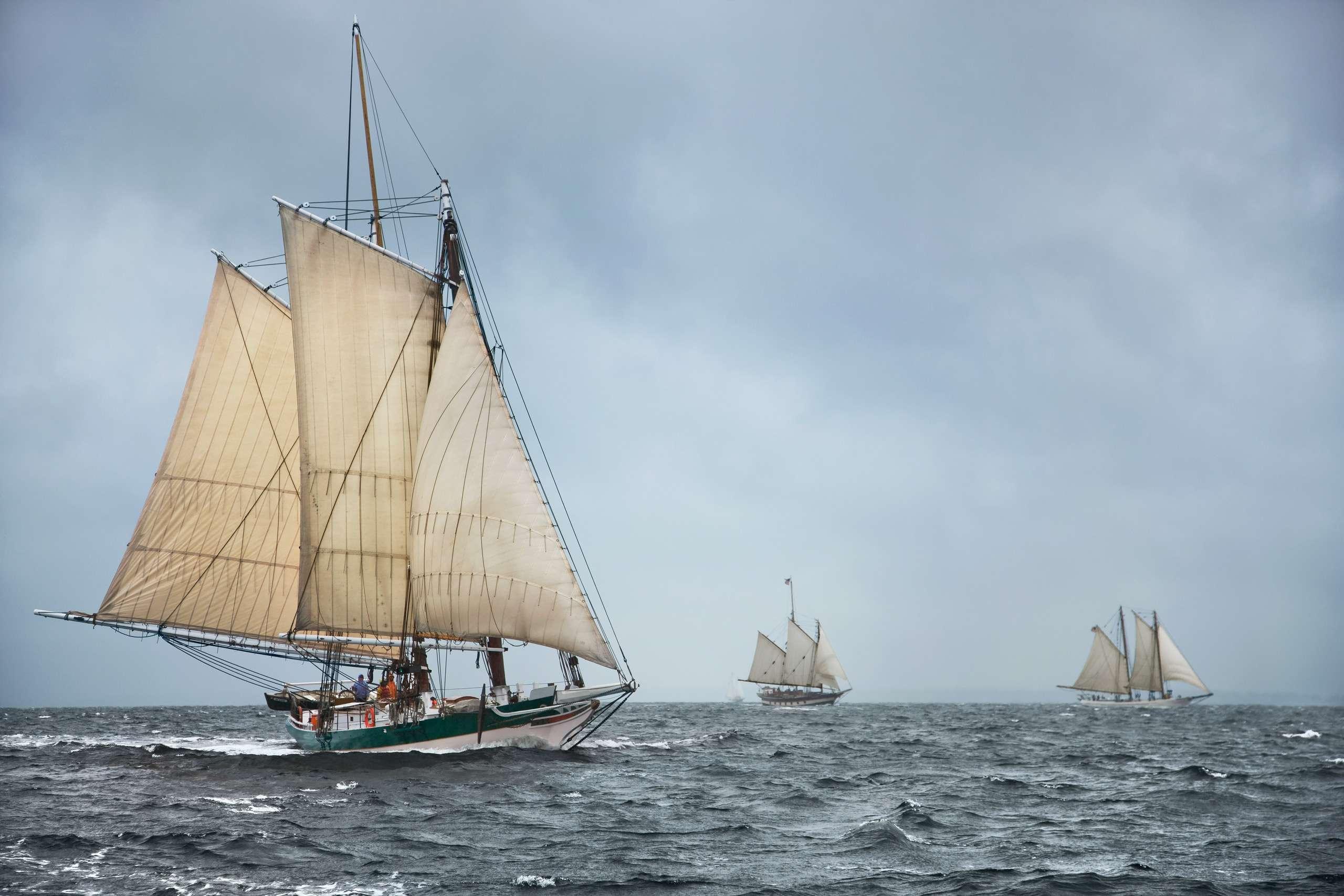 PORTFOLIO - Sailing - Tall Ships #2   PCG601