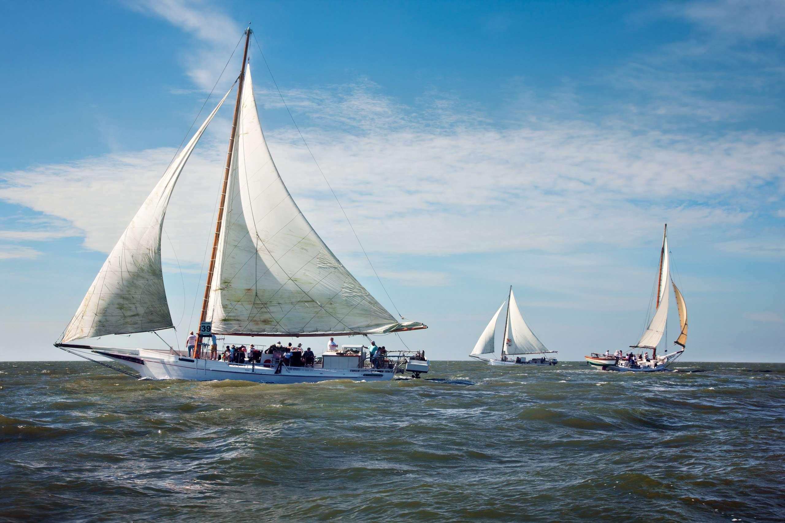 PORTFOLIO - Sailing - Skipjacks #16  PCG762