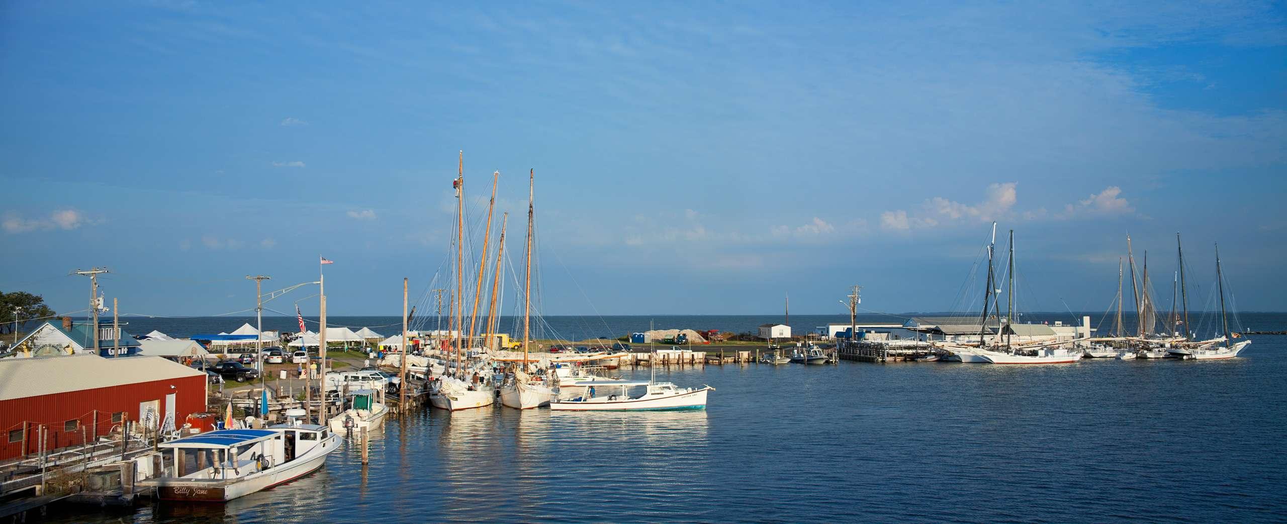 PORTFOLIO - Sailing - Skipjacks #18  PCG662