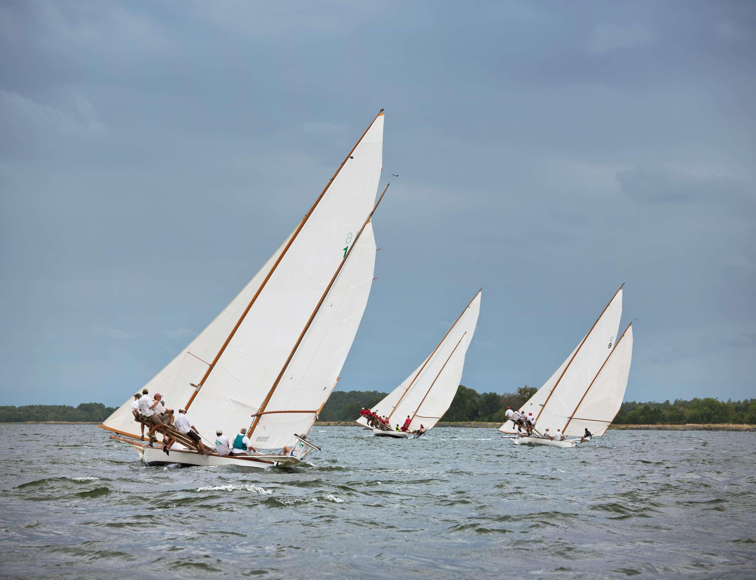 PORTFOLIO - Sailing - Log Canoes #12   PCG554