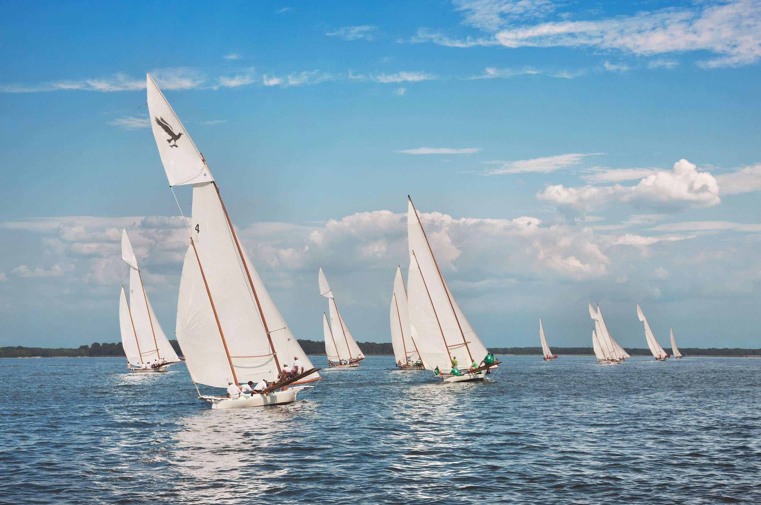 PORTFOLIO - Sailing - Log Canoes #26   PCG576