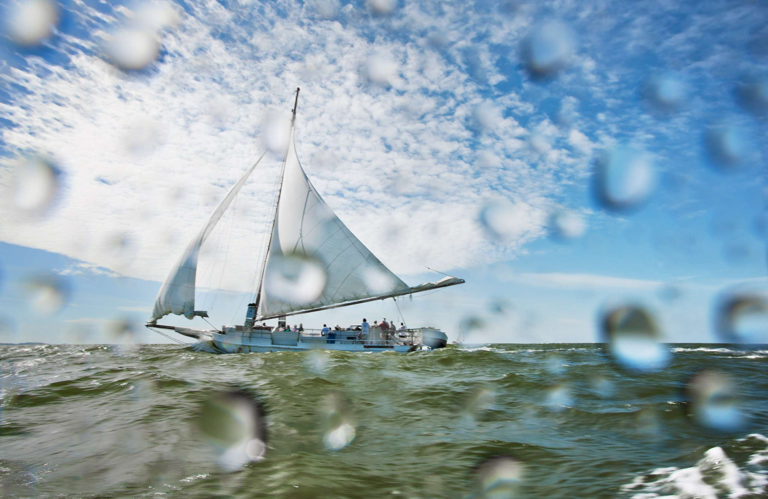 PORTFOLIO - Sailing - Skipjacks #3   PCG758