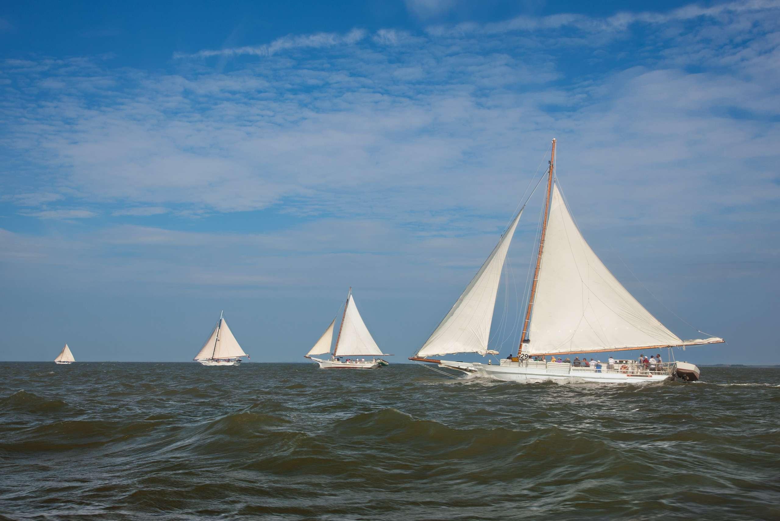 PORTFOLIO - Sailing - Chesapeake #17   PCG653