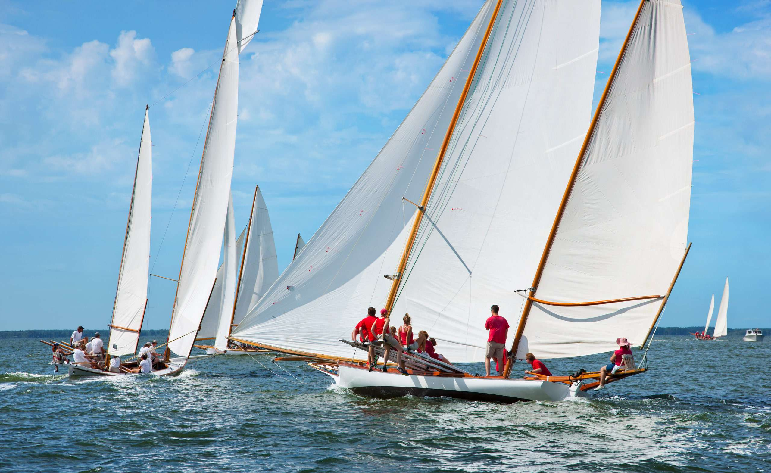 PORTFOLIO - Sailing - Log Canoes #24   PCG580