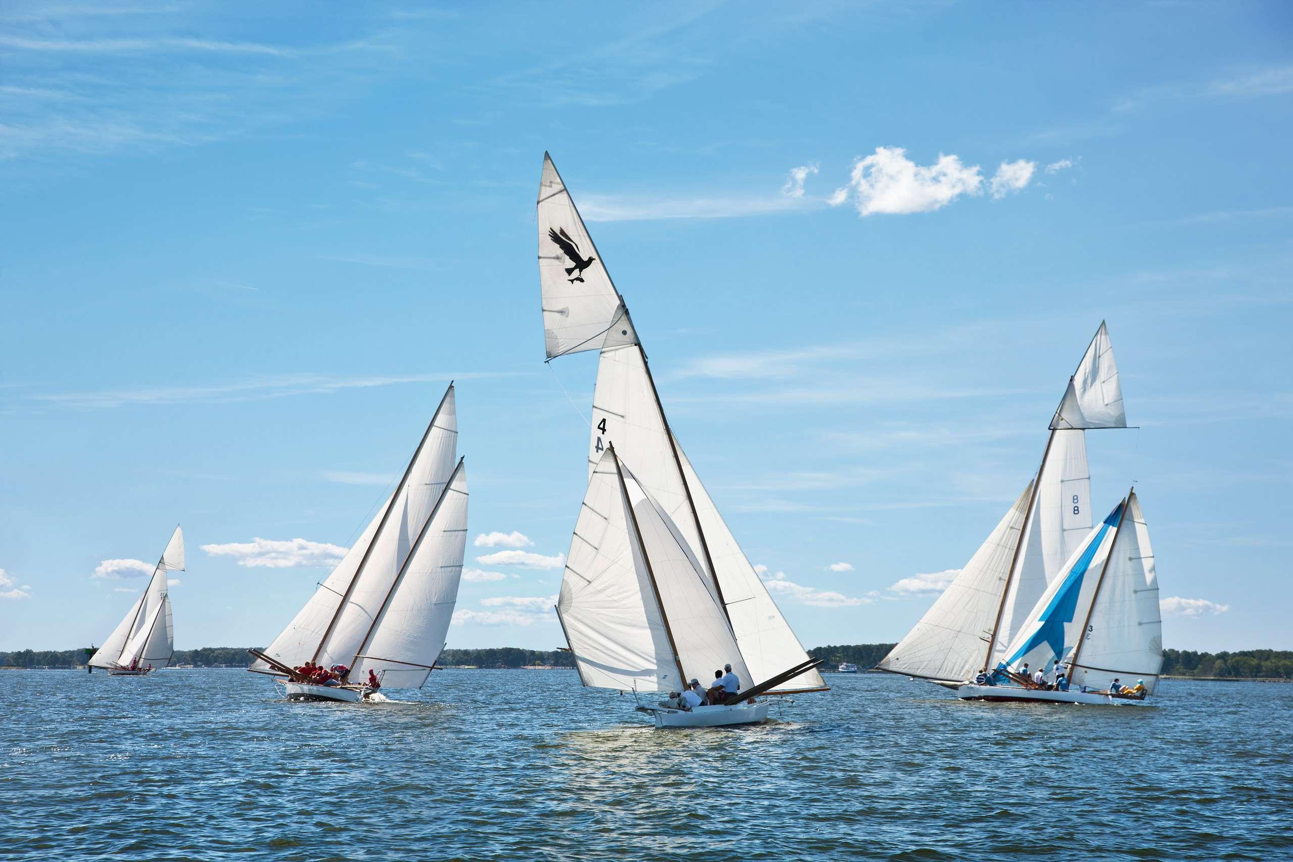 PORTFOLIO - Sailing - Log Canoes #27   PCG575