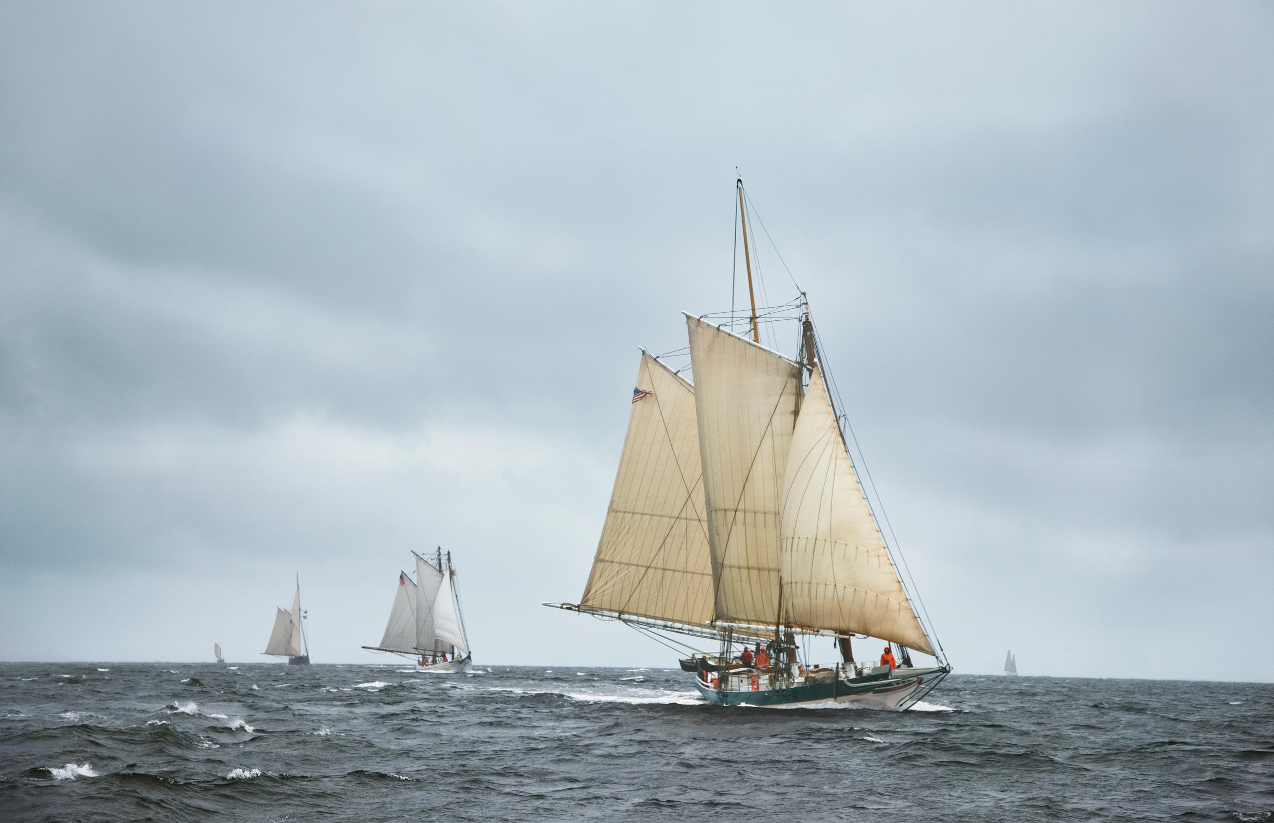 PORTFOLIO - Sailing - Tall Ships #1-PCG599